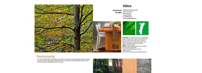 Pages interieures brochure